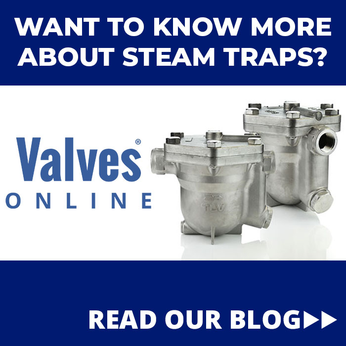 Steam Trap Blog
