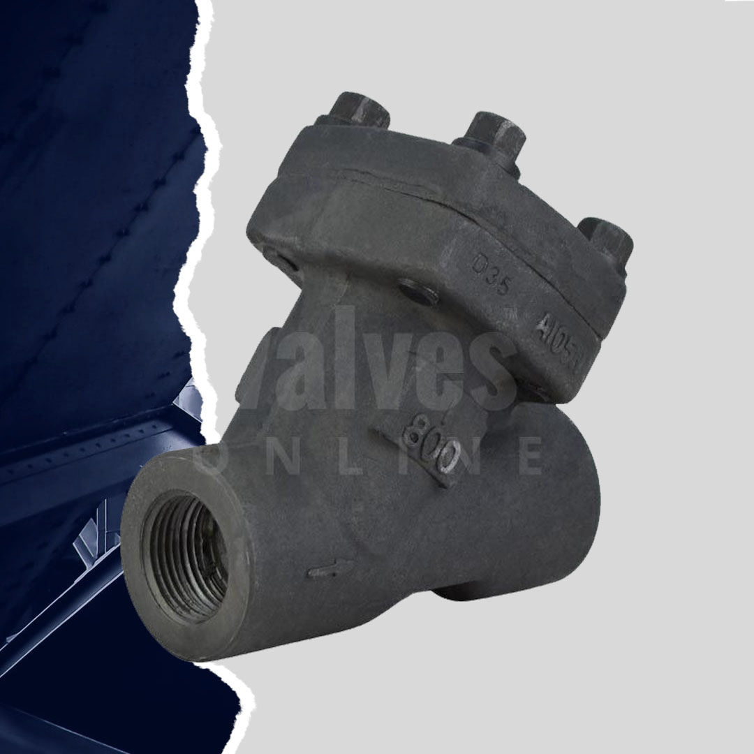 Heavy Duty Forged Steel Y Pattern Strainer Class 800